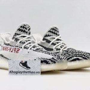 Giày Adidas Yeezy 350 V2 Zebra rep