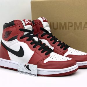 Nike Air Jordan 1 Retro Chicago rep