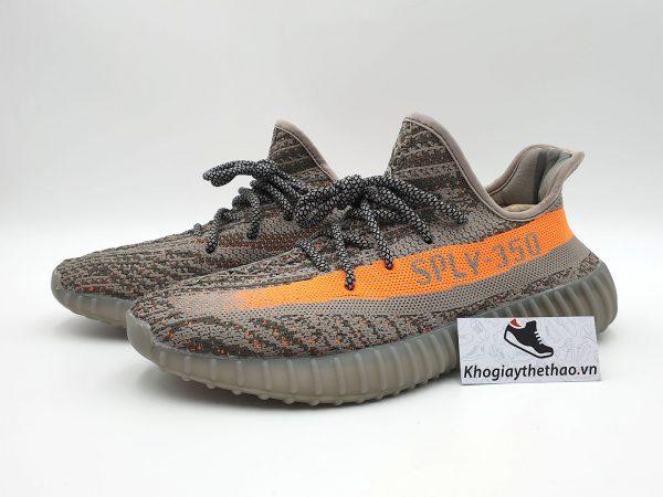 giày adidas yeezy 350 v2 beluga sf